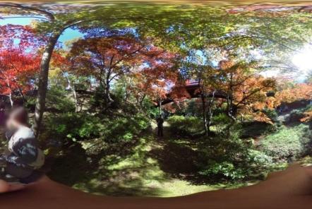 弥彦神社をプライベートで360度撮影(RICOH THETA)