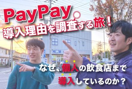 PayPay導入理由を調査する旅!【なぜ、個人の飲食店まで導入しているのか?】