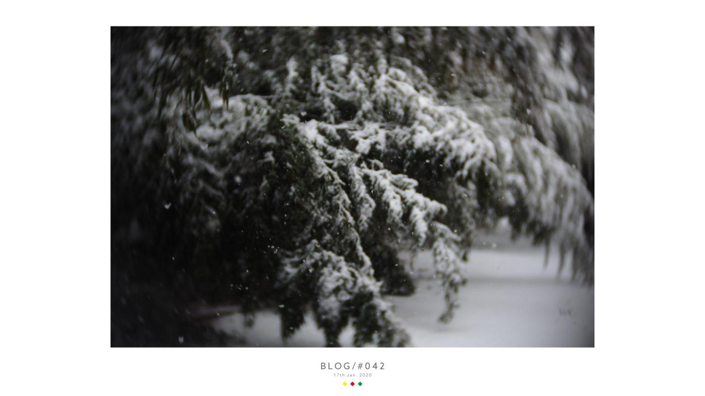 広報担当Mが撮影した雪の写真