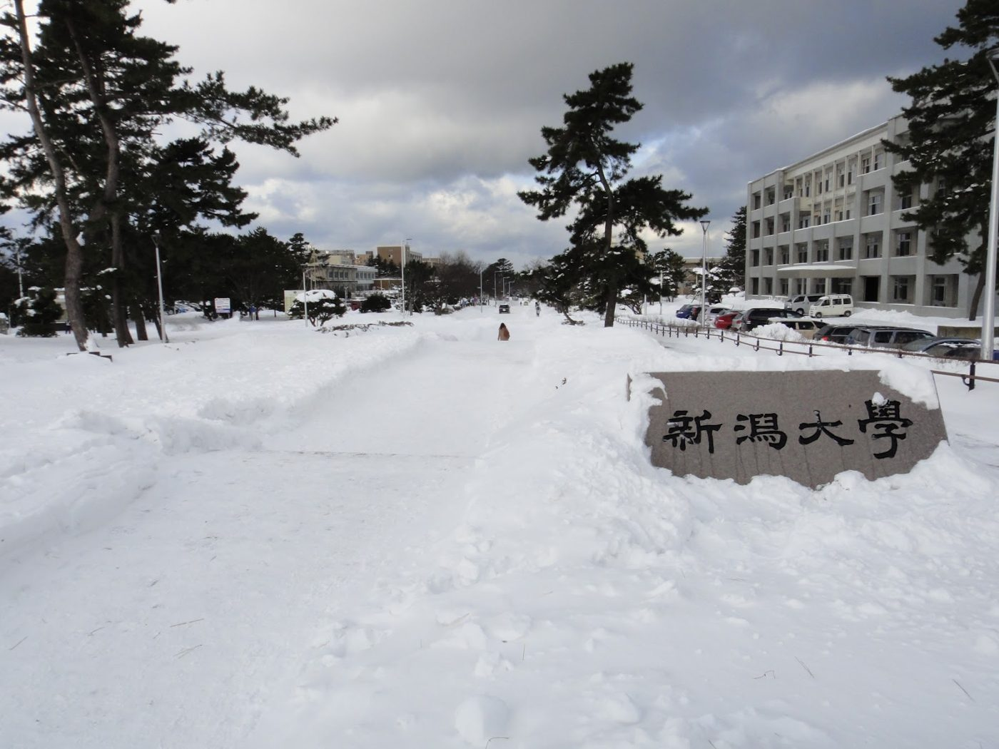 雪の新潟大学