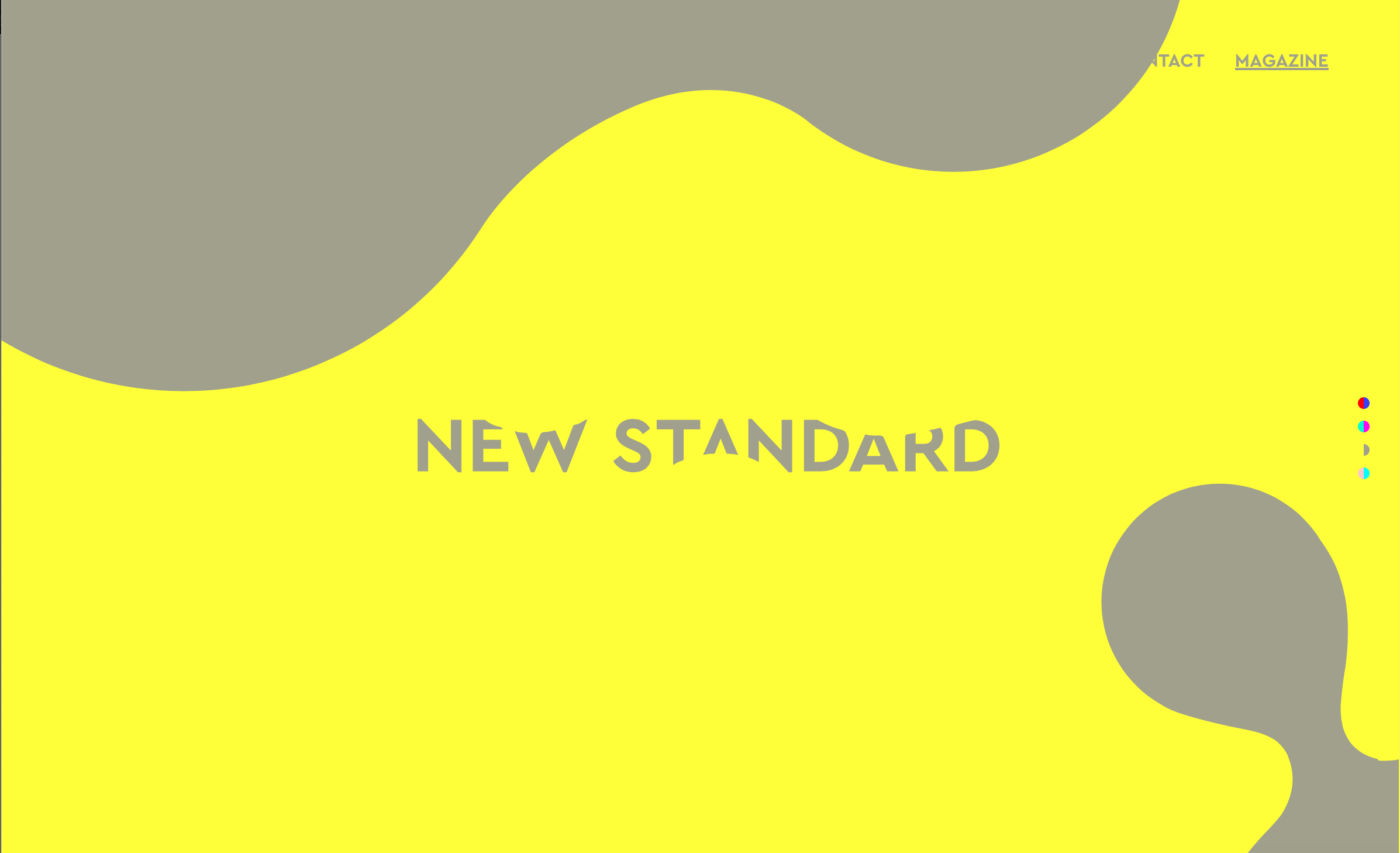 NEW STANDARD株式会社