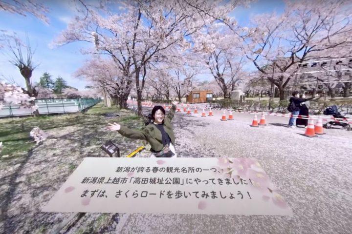 新潟の春の名所! 高田の桜を自宅で360度楽しもう お花見気分を味わえるVR動画をYouTubeに公開中! ~コロナ禍でも多くの人とこの美しい景色を共有したい~